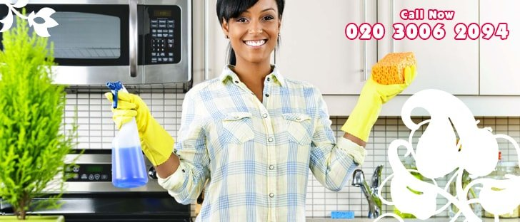 Residential Domestic Cleaning